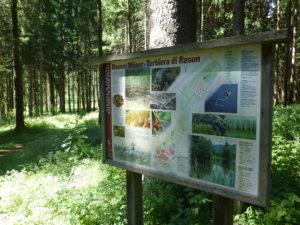 Naturlehrpfad im Rasner Biotop